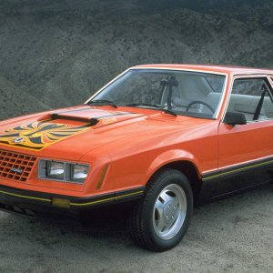 1981 Ford Mustang Cobra
