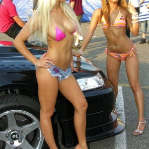 Hot Mustang Ladies