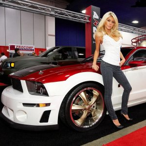 SEMA Model With Mustang