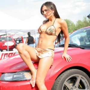Hot NOPI Babe With Saleen Mustang