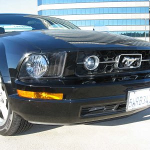 2007 Mustang V6 Premium Coupe
