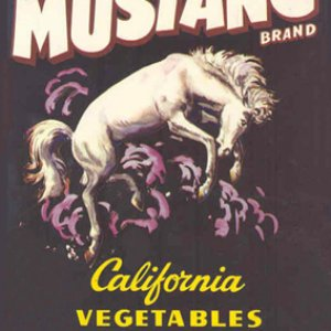 Mustang Veg Lable California 1950s?