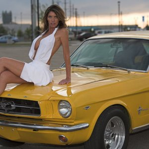 Hot Mustang Babe With 1966 Mustang