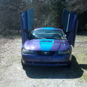 2002 Mustang V6 Coupe