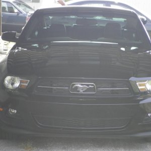 2011 Ford Mustang v6 Premium Coupe/Pony Package