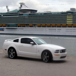 2005 Mustang GT Performance White