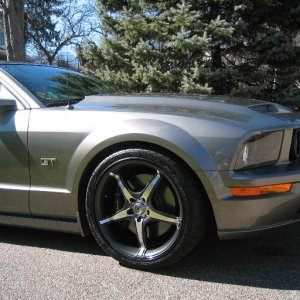2005 Mustang GT Photo
