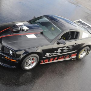 2007 FORD SHELBY GT500 SUPER SNAKE PRUDHOMME EDITION