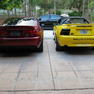 04 gt and 04 cobra