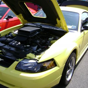 2004 Screaming Yellow GT