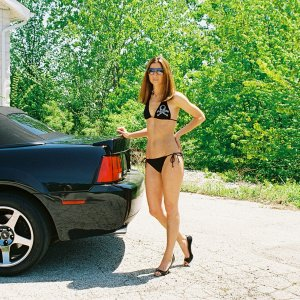 Hot Babe With My 2004 Cobra